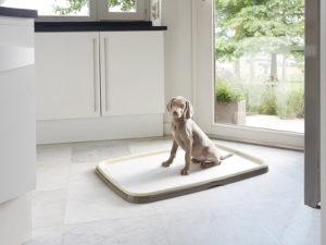Training starter kit for toilet training puppys petworld.ie