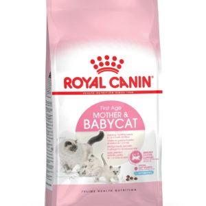 Royal Canin Baby Cat Food 34