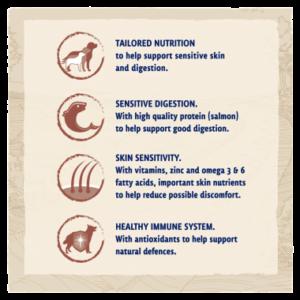 BETA® Sensitive Salmon Dry Dog Food