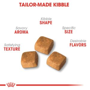 royal canin tailor made kibble for cats 1