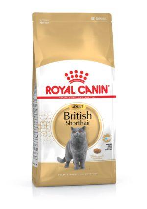 Royal Canin Adult British Shorthair