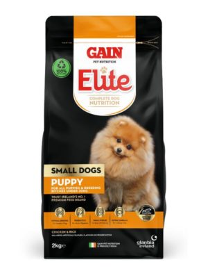 Gain Small Dogs Puppy