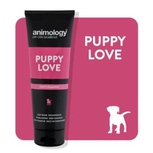 animology puppy love dog shampoo 250ml