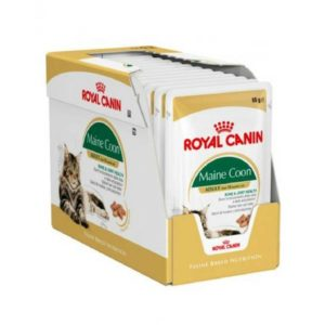 royal canin main coon adult pouches cat food