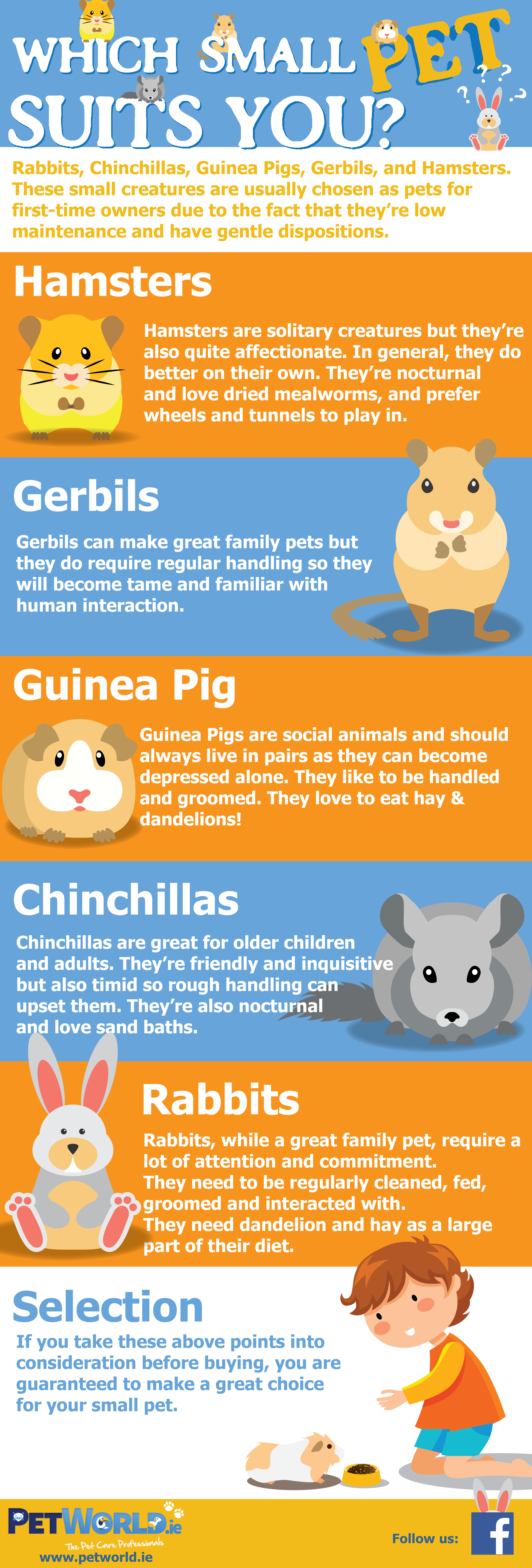 which small pet suits you infographic