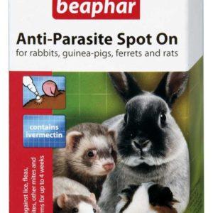 Beapar Anti-Parasite Spot On Petworld Ireland