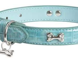 Blue Diamante Bone Dog Collar Petworld.ie