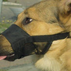 comfort dog muzzle