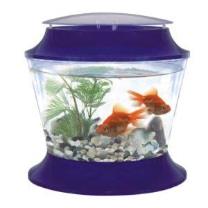 Goldfish Bowl and Lid Large