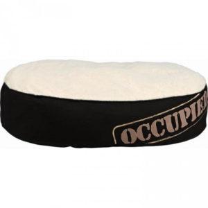 occupied cushion 1