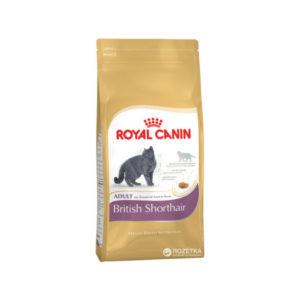 royal canin british shorthair cat food