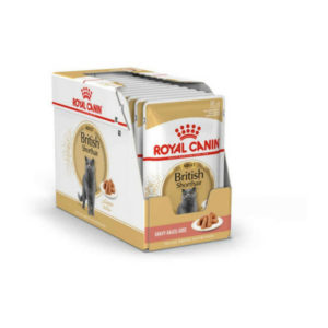 royal canin british shorthair cat food pouches