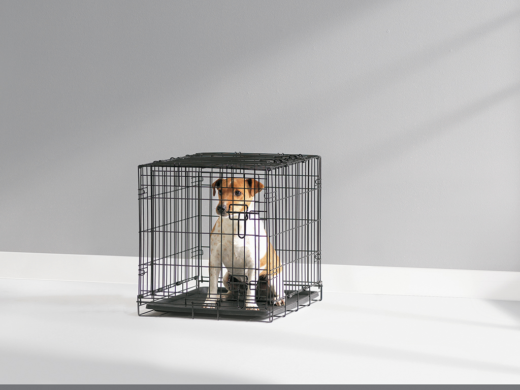 50cm Savic Dog Crate Small