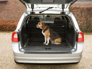Petworld.ie small dog crate