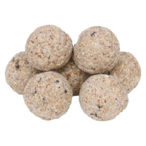 fat balls
