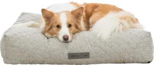 Trixie Noah vital dog cushion square light grey with dog