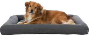 Trixie Pulito vital dog bed square grey with dog