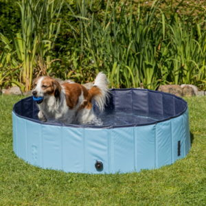 dog pool by trixie