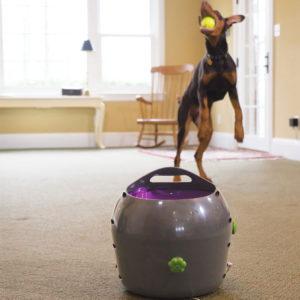 Automatic Ball Launcher PetSafe