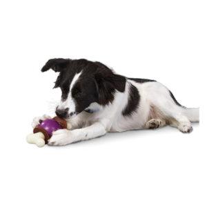Busy Buddy Bouncy Dog Bone with treats