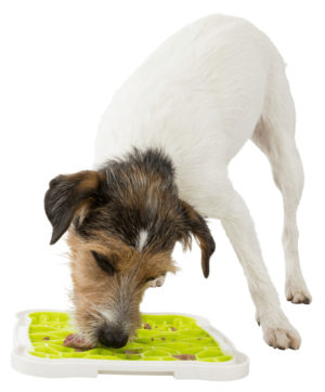 Lick'n'Snack Licking Plate For Dog