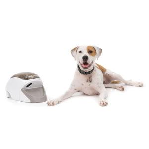 Remote Reward Dog Trainer