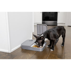 2 meal pet feeder automatic