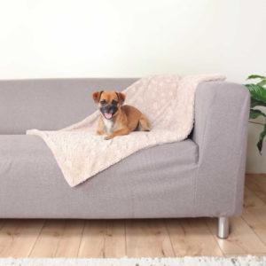 cosy dog blanket