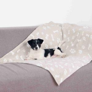 dog on plush blanket