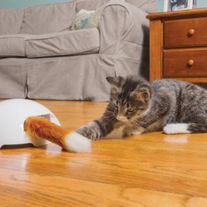 Fox Den Toy Automatic Cat Teaser
