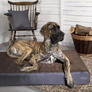 ArmourDillo Heavy Duty Dog Bed