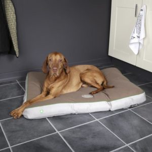 Insect Shield® Dog Mattress Taupe