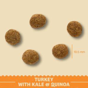 puppy turkey with kale kibble