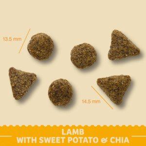 lamb with sweet potato and chia