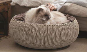 keter pet bed for cats