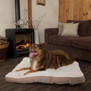 scruffs ellen medium dog mattress