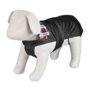 black paris dog coat