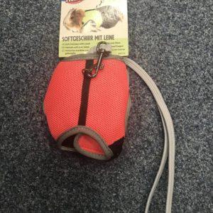 guinea pig leash