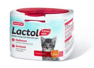 lactol kitten milk 250g