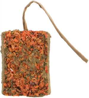 lay Stone with carrot for small pets