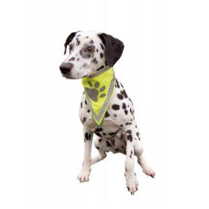 Dog Safety Neckerchief.