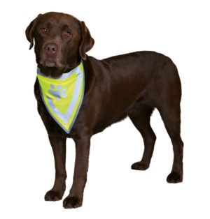 trixie neckerchief for dogs